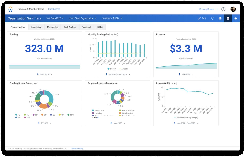 Workday Enterprise Planning Nonprofit Organization Program metrics dashboard.